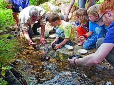 Natur-Erlebniszentrum_HohneHof_Wasserstation2_MandyBantle_NationalparkHarz